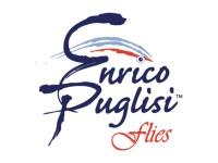 eurico_EC_カテゴリ